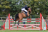 UK Berkshire Equestrian Event At Newbury Show