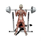 muscle woman at weightlifting
