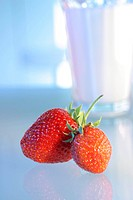 Two strawberries _ frosted glass in the background _ strawberry _ Fragaria Vesca _ The Strawberry appertains to the Multi Generation families of the r...