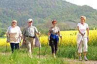Seniors doing nordic walking