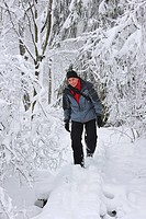 Hiker hiking in the snow in nature reserve High Fens / Hautes Fagnes in winter, Belgium
