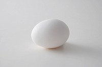 a close view of an egg