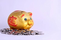 the golden piggy bank and coins