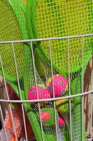 Plastic Tennis Racket and balls for sale, Teignmouth, Devon, England