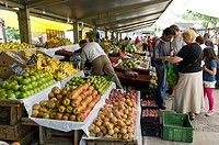 Santiago de Chile city. Market in the square of Los Dominicos. District of Las Condes