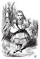 Alice and the pig baby - Alice´s Adventures in Wonderland original vintage engraving This time there could be no mistake about it: it was neither more...