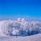 Natural scenery of Fengning grassland in Hebei,China in winter