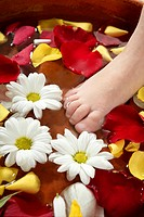Aromatherapy, flowers feet bath, rose petal