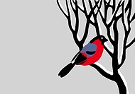 vector drawing bullfinch on tree