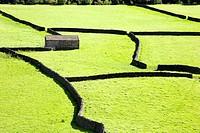 Field Barns at Gunnerside Swaledale Yorkshire Dales England