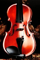 Violin photographed in studio