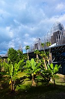 Tijabaou Cultural Center by architect Renzo Piano, Noumea, Grand Terre, New Caledonia