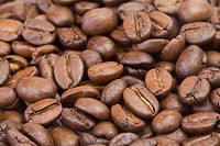 A close view of coffee beans.