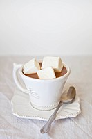Hot cocoa and homemade marshmallows