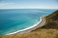 Landscape, beach, New Zealand