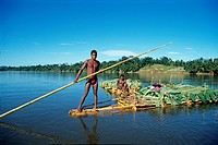 men carrying bananas on a bamboo raft, Canal des Pangalanes, Mananjara on the East Coast, Republic of Madagascar, Indian Ocean