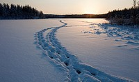 Human trail on snow on frozen lake ice at midwinter  Location Mustalampi Suonenjoki Finland Scandinavia Europe EU