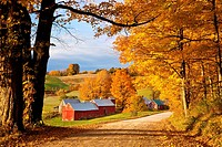 Autumn morning at the Jenne Farm near South Woodstock, Vermont, USA