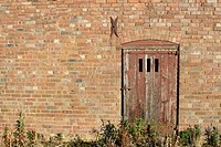 Old barn door from derelict farm building, England , UK