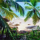 Beach with palm trees and granite rocks, Praslin island, Seychelles