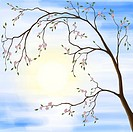 Illustration of sakura cherry blossom in spring sunrise scenery against the sun
