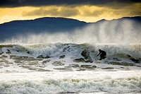 Man surfing, Vancouver Isalnd, British Columbia, Canada