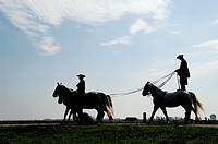 Hungary, A ´chicos´ cowboy giving a riding demonstration at a farm in the ´Puszta´, near Kalocsa