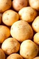 Potatoes close_up