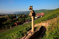 Statue at a vineyard in Franconia, Germany