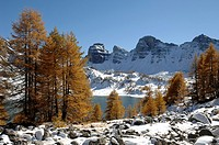 Lake Allos in Winter Mercantour National Park Alpes-de-Haute-Provence French Alps France