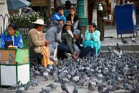 Locals with pigeons on the Plaza Murillo, La Paz, Bolivia
