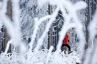 Man jogging through winter scenery, Irsee, Bavaria, Germany