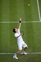 England, London, Wimbledon. Andy Murray GBR serving in a match at the 2011 Wimbledon Tennis Championships.