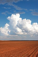 Plowed Red Dirt Field and Whtie Puffy Clouds, Texas, USA