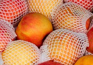 Apples with net
