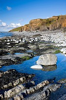 Rockpools beside the cliffs at Abbotsham, Devon, England, United Kingdom, Europe