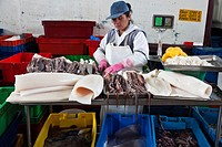 Fish market of Villa María del Triunfo, the biggest in South America, Lima, Peru