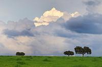 Storm clouds Alentejo Portugal