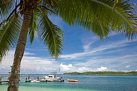 Palm tree and boats, Shangri-La Fijian Resort, Yanuca Island, Coral Coast, Viti Levu, Fiji, South Pacific