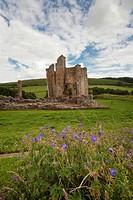 Edlingham Castle, Northumberland England