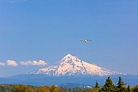 A Jet Takes Off From Portland International Airport With Mount Hood In The Background, Portland Oregon United States Of America