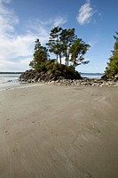 an island at tonquin beach along the lighthouse trail, tofino british columbia canada