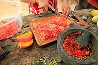 homemade salsa preparation at sierra la laguna near los cabos area, san jose del cabo baja california mexico