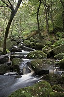 water flowing over moss covered rocks in peak district national park, derbyshire england