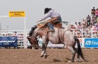 Cowboy, saddle bronc riding, Strathmore Heritage Days, Rodeo, Strathmore, Alberta, Canada