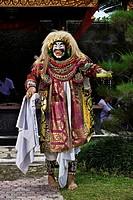 Indonesia, Bali Island, Ubud village, Dalam Ubud temple, royal cremation of prince Cokorda Bagus Raka, Topeng show