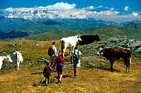 France, Savoie, Val Thorens, Les Menuires, Massif de la Vanoise, Tarentaise Valley, hiking on the side of the Col de La Bache with a view of the Mont ...