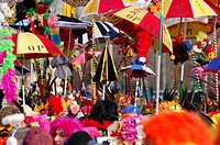 France, Nord, Dunkirk, carnival of Dunkirk, colorful umbrellas over the crowd of carnival