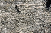 Gneiss is a common rock formed by metamorphic processes from pre_existing formations that were originally either igneous or sedimentary rocks.
