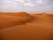 Sand dunes of the Erg Chebbi Desert, near Merzouga, Morocco, North Africa, Africa